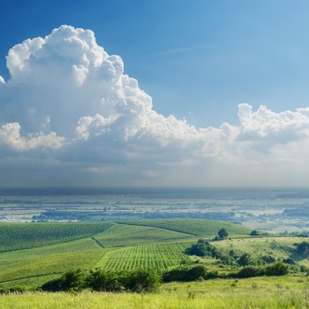 carpathian mountains: rainy clouds over vineyard