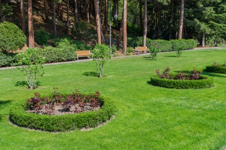landscaped: green park design Stock Photo