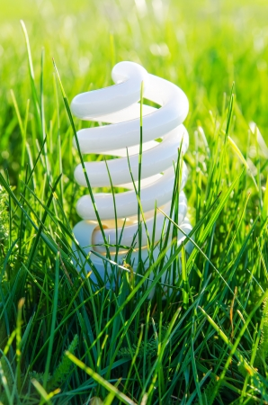 outdoor electricity: energy-saving lamp in green grass