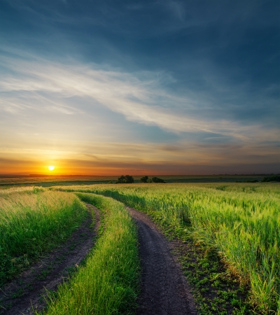 sunset over rural road near green field Reklamní fotografie - 17477899