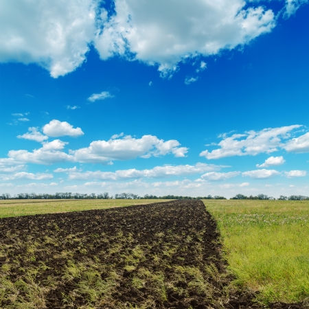 ploughed field: blue cloudy sky and plouwed field