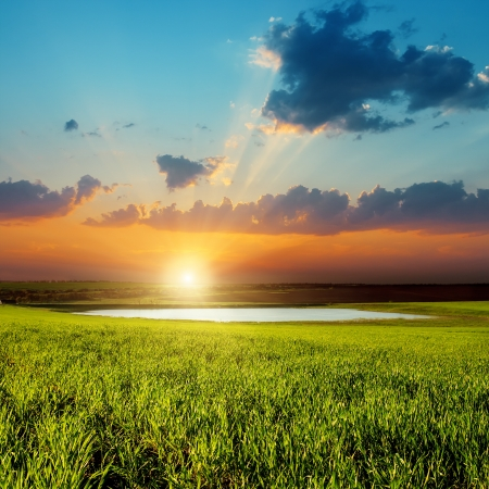good sunset over green field with pond photo