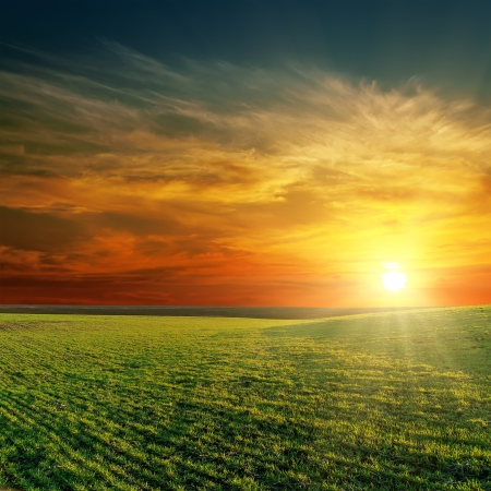 colorful sunrise: good sunset over green field