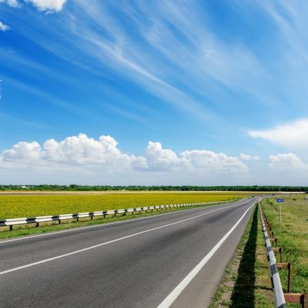 曇りの地平線にアスファルトの道路