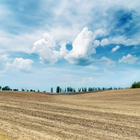 agro: autumn field after harvesting and cloudy sky
