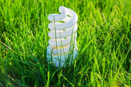 energy efficiency: white energy saving bulb in green grass Stock Photo