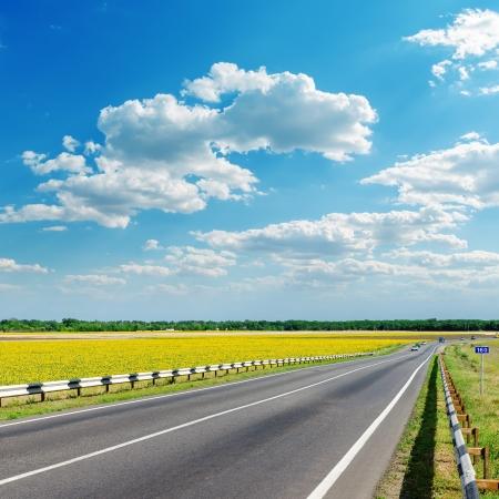 黄色のフィールドの空の雲の下でのアスファルトの道路と良好な景観 写真素材