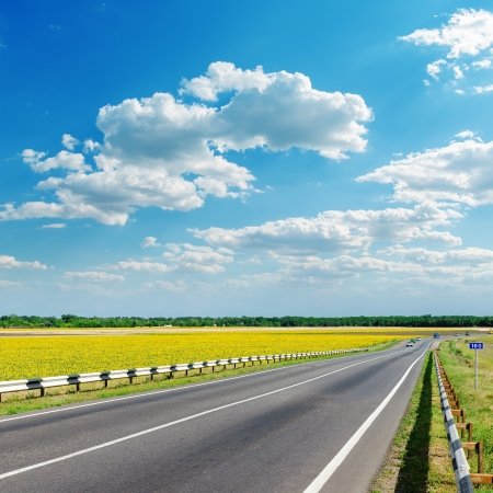 good landscape with asphalt road in yellow field under clouds on sky Фото со стока