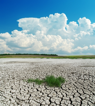 arid climate: drought earth with green grass under clouds
