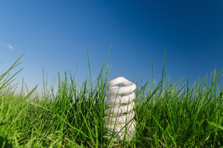energy saving bulb in green grass under deep blue sky photo