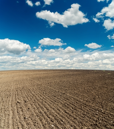 ploughed field: black plowed field after harvesting and blue cloudy sky