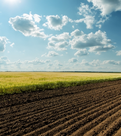 ploughed field: black and green agriculture field and cloudy sky Stock Photo