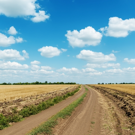 country road in field and clouds in blue sky photo