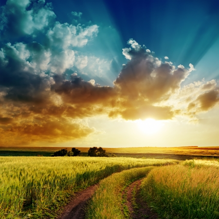 dramatic sunset over rural road in green field 스톡 콘텐츠