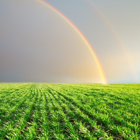 green field and rainbow in grey sky photo
