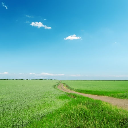 road in green field under blue sky