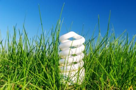 energy saving bulb in green grass against blue sky photo