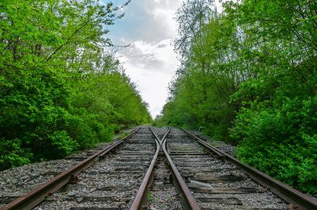 wood railroads: crossing of two railroads in wood Stock Photo