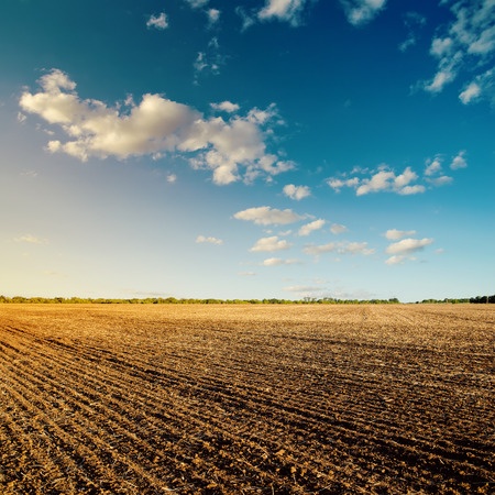 tillage: black field after harvesting and blue cloudy sky