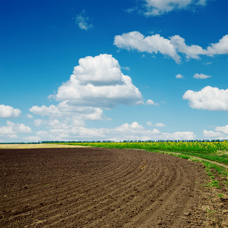 tillage: black plowed field and clouds in blue sky Stock Photo
