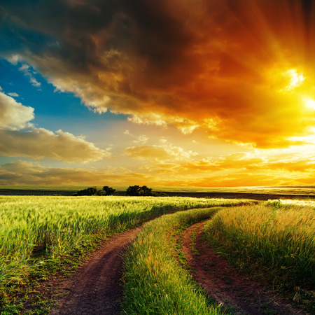good sunset over winding road in field photo