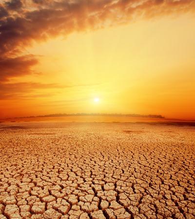 砂漠の熱いオレンジ夕日