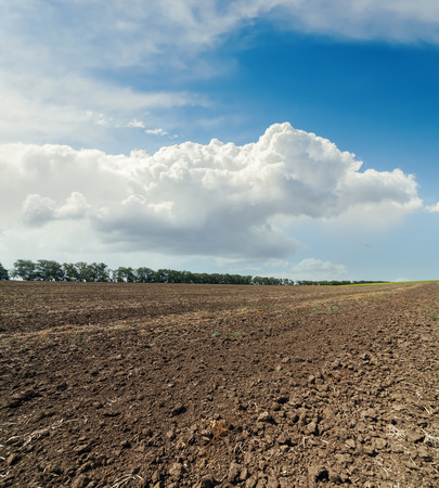 sky background: clouds in sky over plowed field Stock Photo