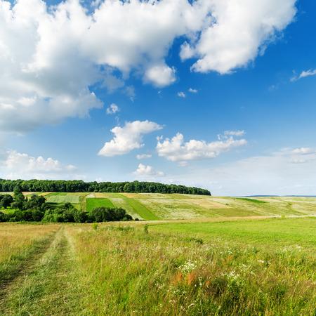 blue green landscape: green landscape and clouds in blue sky