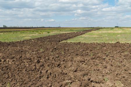 arando: campo de la agricultura negro despu�s de arar