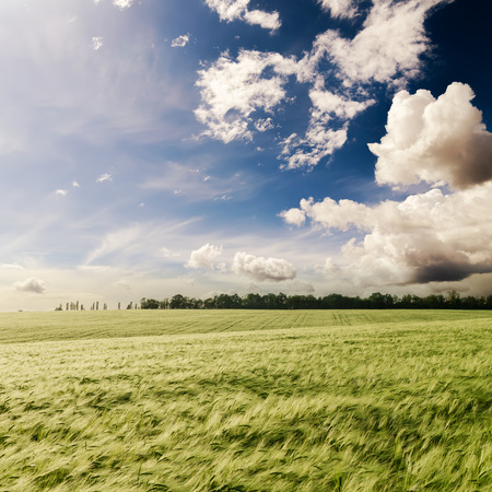 spring season: dramatic sky over green grass field