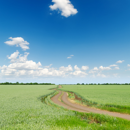 blue cloudy sky: green fields with road under deep blue cloudy sky Stock Photo