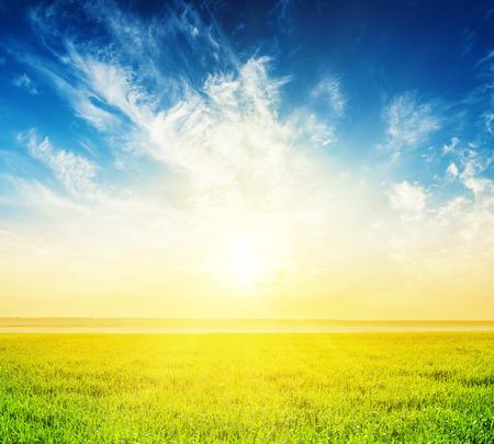 緑の草やそれ以上の雲の良い夕日