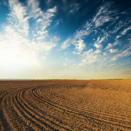 over black: sunset over black agricultural field