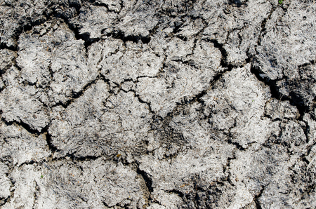 sequias: dry drought earth as background