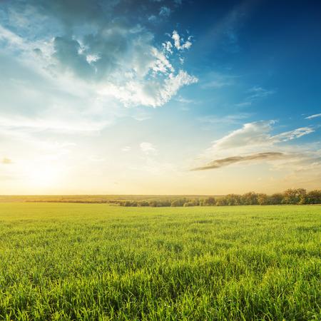 青い空緑の農業分野での夕日