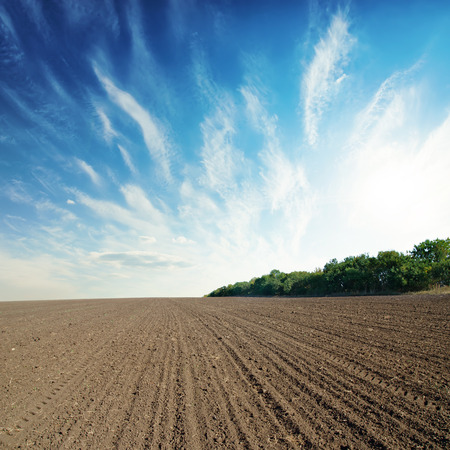 black agricultural field and blue sky with clouds
