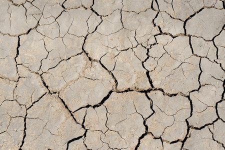 global environment: drought earth closeup as textured background