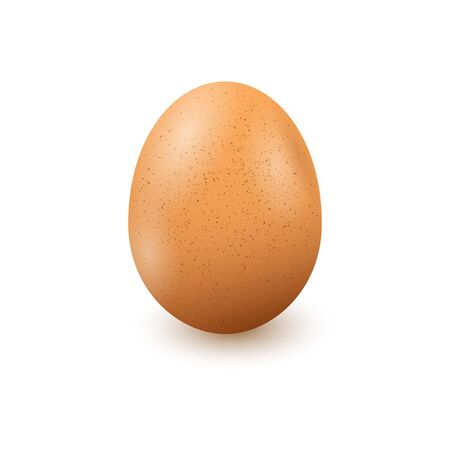 Realistic egg on white background with shadow. Vector in. Иллюстрация