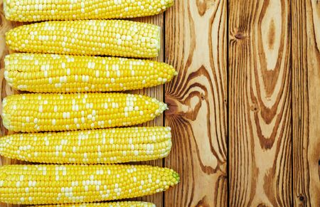 golden maize on wooden board with copy space
