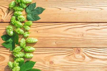 green hop cones and leaves on a wooden table Stockfoto