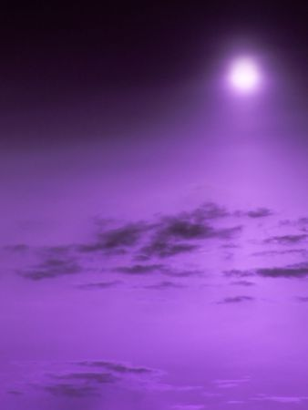 purple stars: The incredible purple sky.