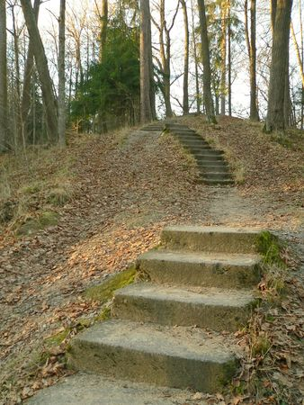The stairs in the park. Stock Photo