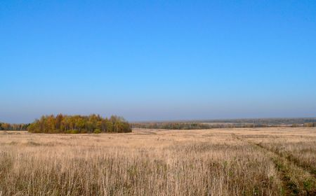 The rural landscape in autumn. photo