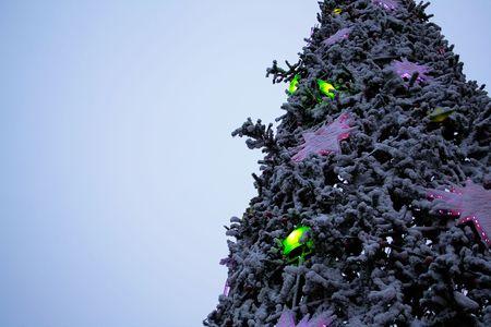 The christmas tree against blue sky. photo