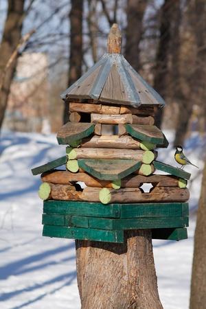 The birdfeeder in the park. photo