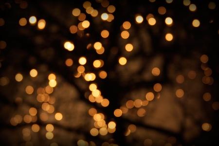 La iluminación defocused en un árbol.
