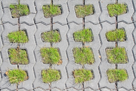 Permeable Pavers. View from above. Stock Photo
