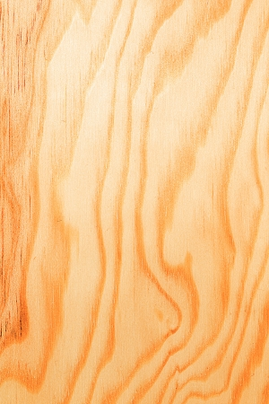 The new wooden boards close up. Stock Photo - 16719300