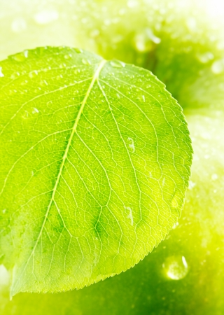 Green apple with a leaf  photo