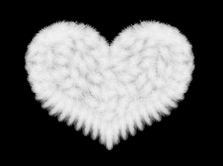 white feathers in the shape of heart  photo